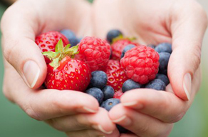 hands with berries